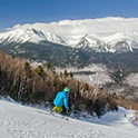 Wildcat Ski Area