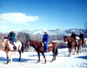 Farm by The River Winter Horseback Riding