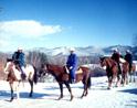 Farm by The River Winter Horseback Riding